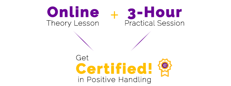 Positive Handling Training